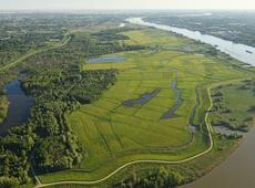 Potpolder, grootste natuurreservaat van Oost-Vlaanderen, Kruibeke, Bazel, Rupelmonde, Sigmaplan, overstromingsgeied